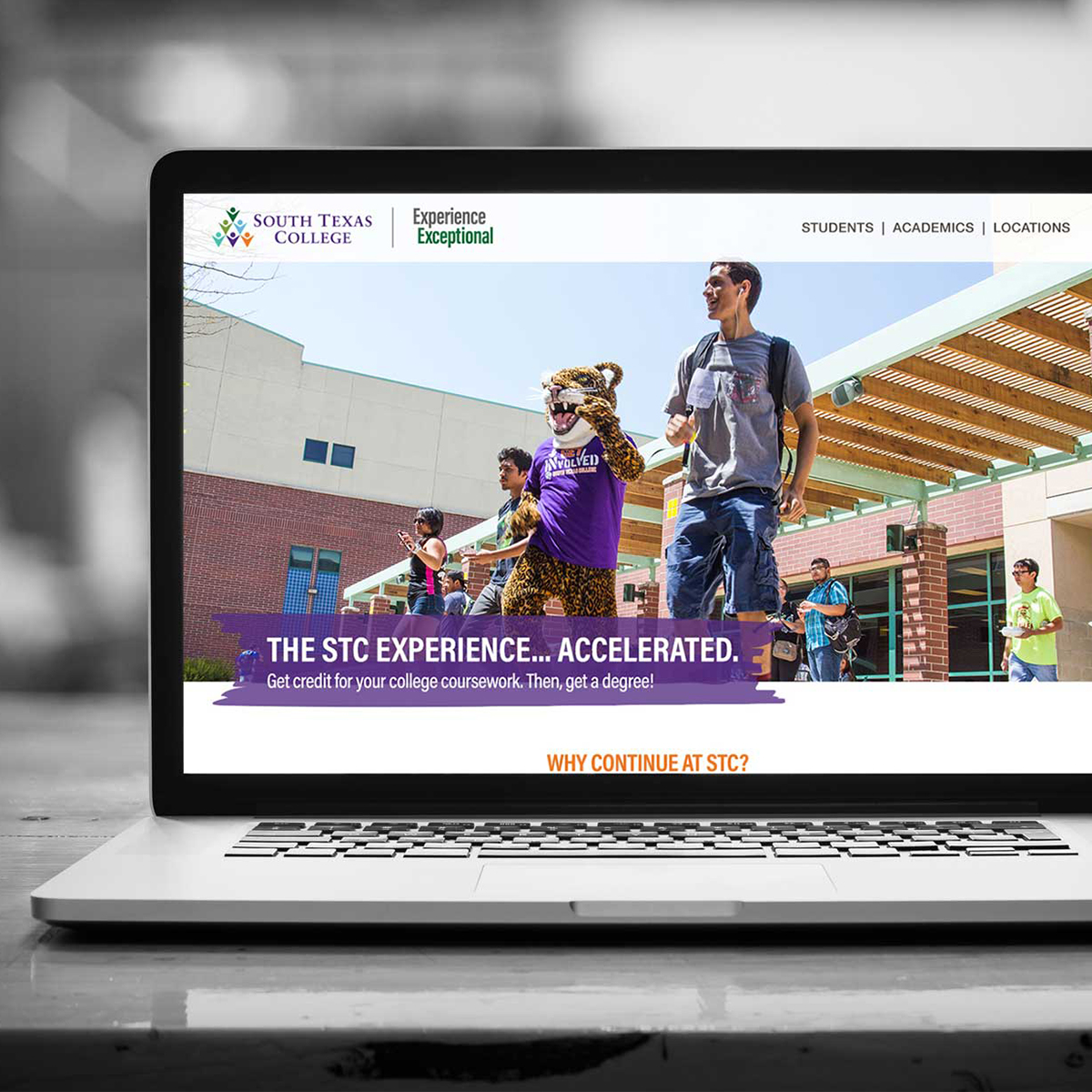 South Texas Community College - Marketing Examples
